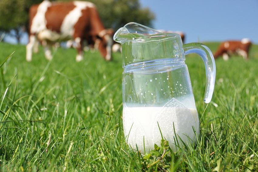 Khasiat Susu Murni kaya akan Kalsium