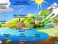 Pemanasan GLobal dan Iklim yang Tidak Stabil