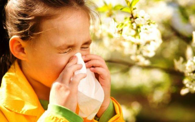Diagnosis dan Penatalaksanaan Penyakit Alergi