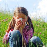 Rinitis Alergi Menurut Beberapa Ahli