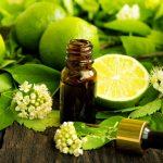 Aromaterapi Tanaman Aromatik Reseptor Pikiran, Tubuh, dan Semangat
