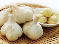Bawang Putih (Allium sativum L) Tanaman yang Bermanfaat Untuk Pengobatan