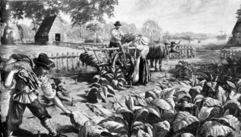 Sejarah Rokok