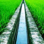 Pengertian Sistem Irigasi Pertanian Menurut Pakar