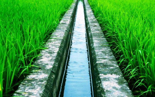 Pengertian Sistem Irigasi Pertanian Menurut Pakar Ulya Days