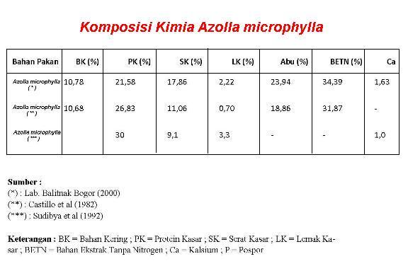 Komposisi Nutrisi Azolla Microphylla
