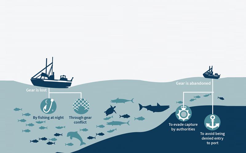Dampak Illegal Fishing