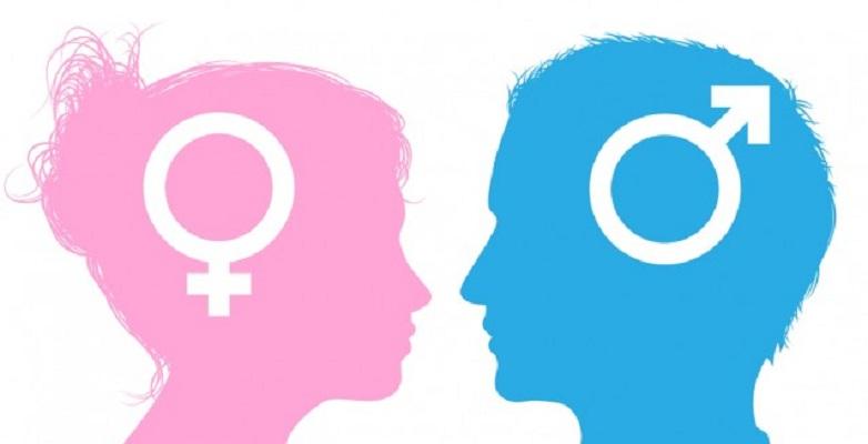 Konsep Gender Menurut Para Ahli