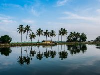 Tour to Kerala provides lifetime opportunity to experience palm-fringed water passages, rice fields, traditional villages and captivating surroundings.