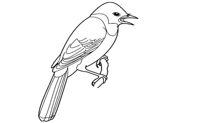 Lirik Lagu Anak Burung Kutilang